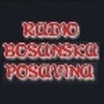bosanska-posavina[1]