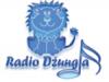 Radio-Džungla-2.-Program-Doboj-Bosna-i-Hercegovina[1]