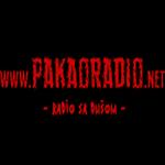 Pakao-Radio-Banja-Luka-Bosna-i-Hercegovina[1]